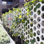 Perforated trellis
